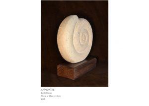 Ammonite by Nicola Beattie, Contemporary Artists