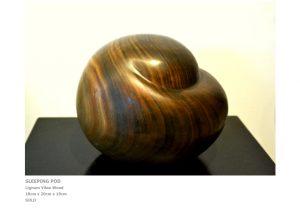 rt by Sculptor Nicola Beattie - Sleeping Pod